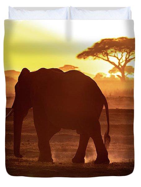 Elephant Walking Through Amboseli At Sunset Duvet Cover