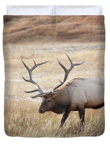 Elk In Yellowstone National Park Duvet Cover