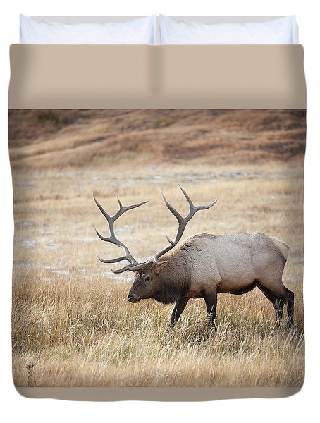 Elk In Yellowstone National Park Duvet Cover