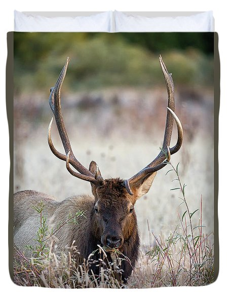 Duvet Cover featuring the photograph Elk Portrait by Nathan Bush