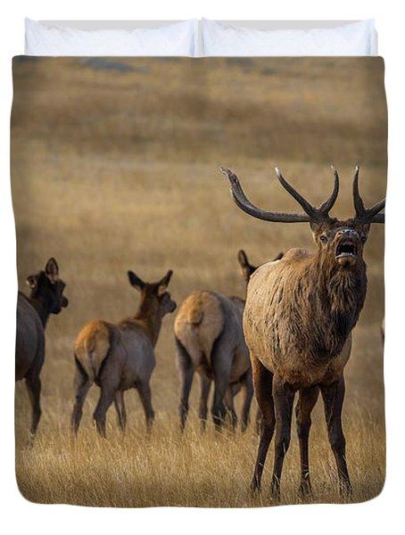 Elk Rut In Full Swing Duvet Cover