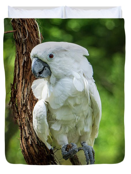Endangered White Cockatoo Duvet Cover