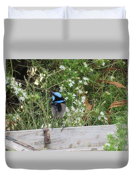 Fairy-wren 3 Duvet Cover