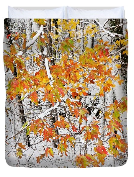 Fall And Snow Duvet Cover