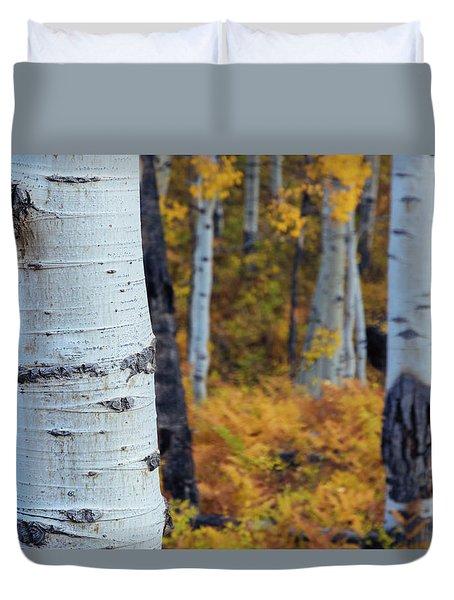 Fall Aspen Forest Duvet Cover