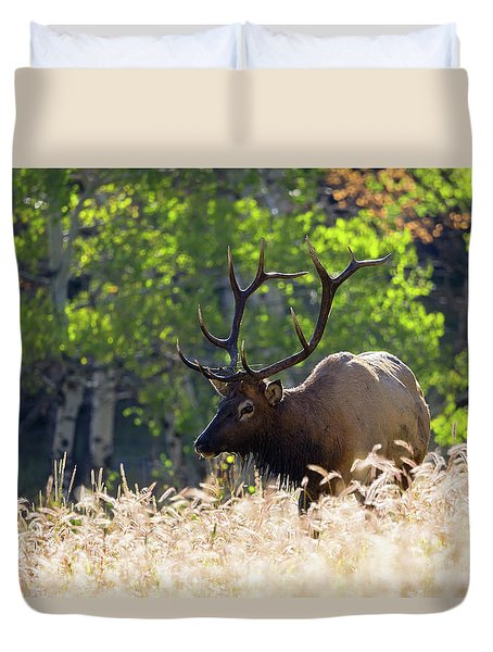 Duvet Cover featuring the photograph Fall Color Rocky Mountain Bull Elk by Nathan Bush