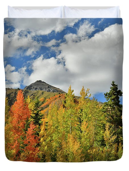 Fall Colored Aspens Bask In Sun At Red Mountain Pass Duvet Cover