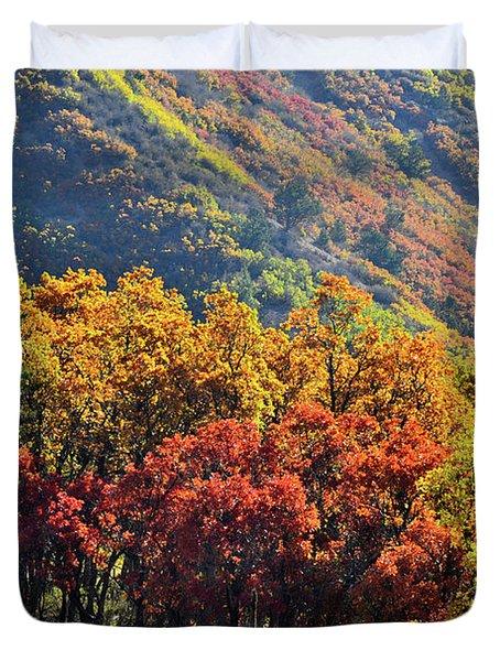 Fall Colors Along Avalanche Creek Road Duvet Cover