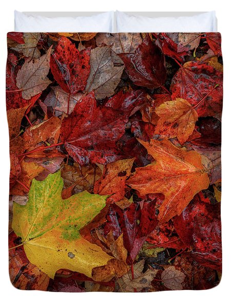 Fall Colors Duvet Cover