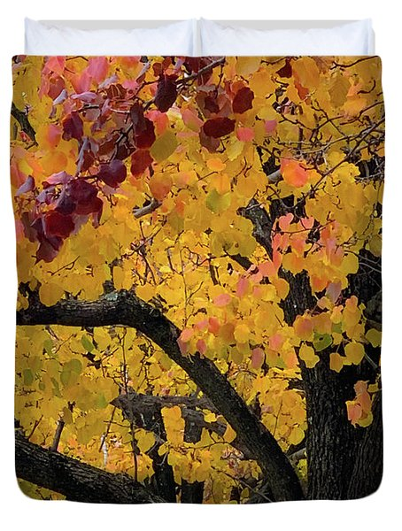Fall In Carlyle Duvet Cover
