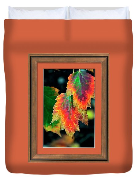 Duvet Cover featuring the photograph Fall Leaves 6072 Framed by Jerry Sodorff