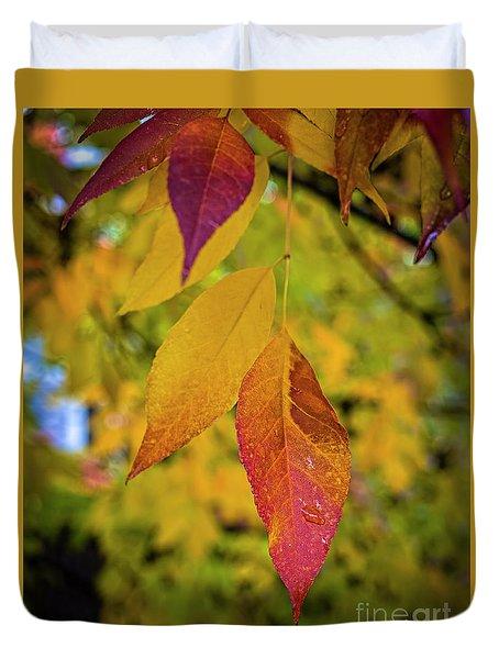 Fall Leaves Duvet Cover