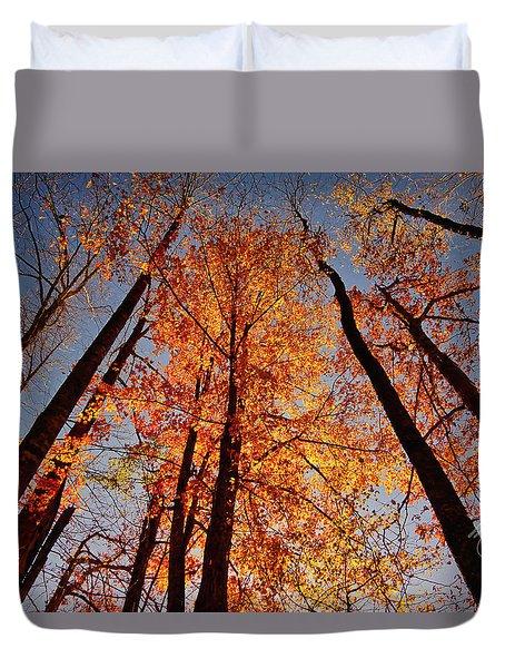 Fall Trees Sky Duvet Cover