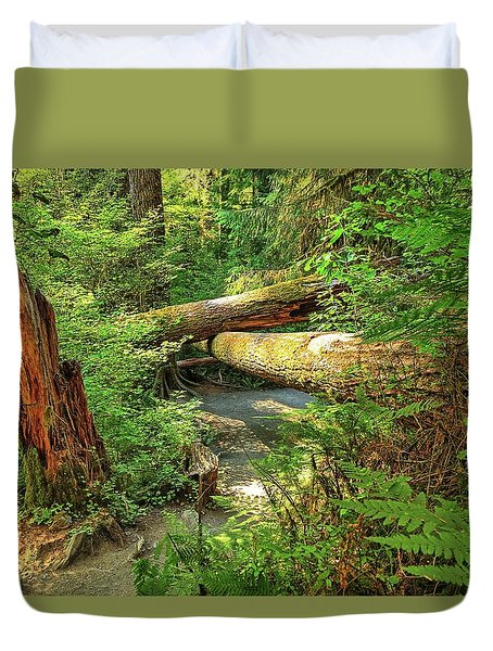 Fallen Trees In The Hoh Rain Forest Duvet Cover