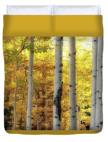 Fall's Visitation Duvet Cover
