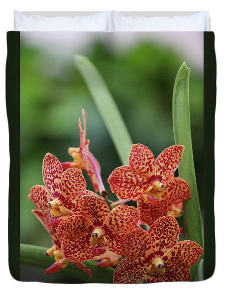 Family Of Orange Spotted Orchids Duvet Cover