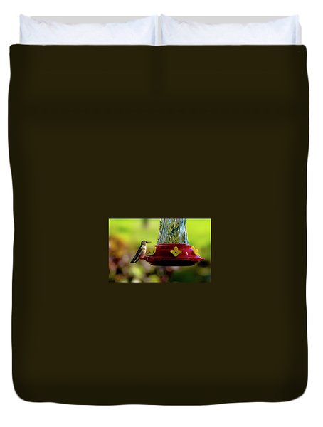 Duvet Cover featuring the photograph Female Ruby Perched by Onyonet  Photo Studios