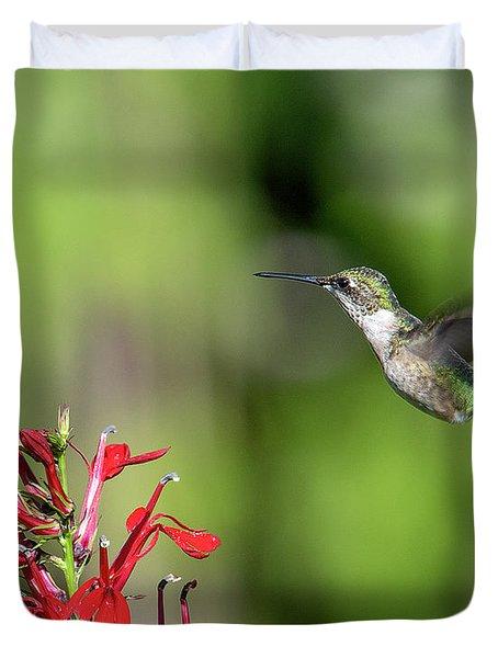 Female Ruby-throated Hummingbird Dsb0320 Duvet Cover