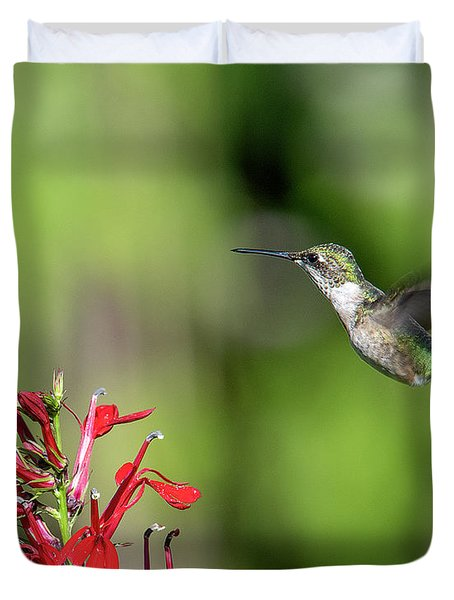 Female Ruby-throated Hummingbird Dsb0320 Duvet Cover