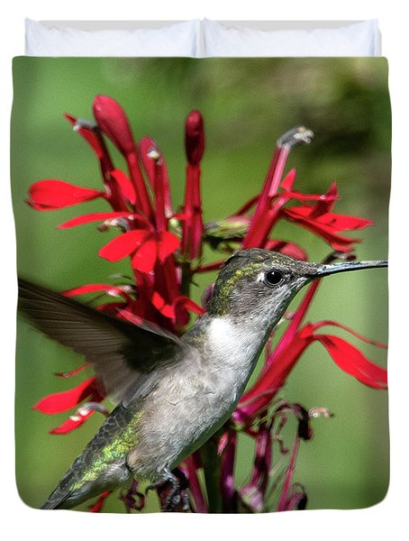 Female Ruby-throated Hummingbird Dsb0325 Duvet Cover