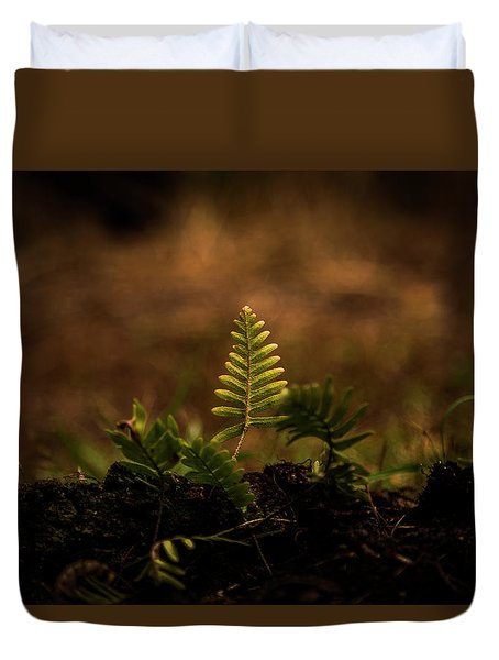 Fern Of Life Duvet Cover