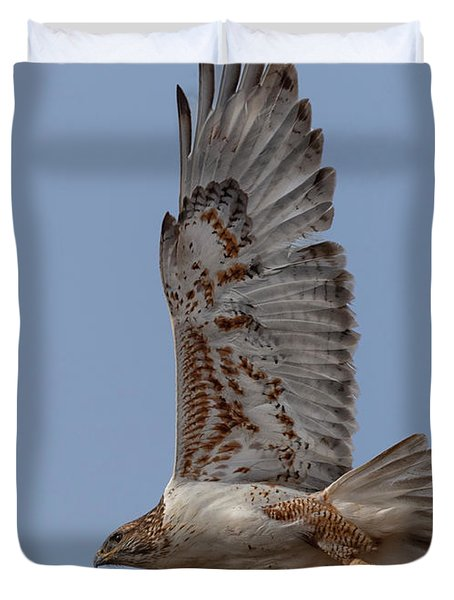 Ferruginous Hawk On The Wing Duvet Cover