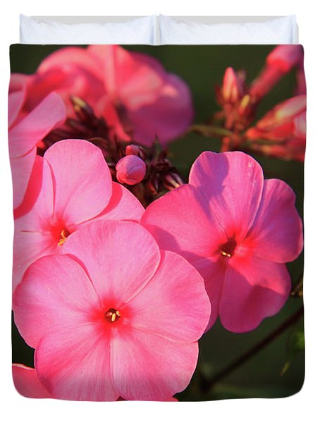 Flaming Pink Phlox Duvet Cover
