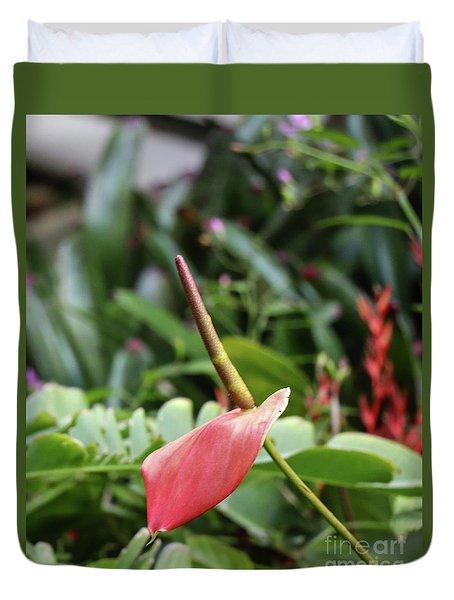 Flamingo Flower - Anthurium Andreanum Duvet Cover