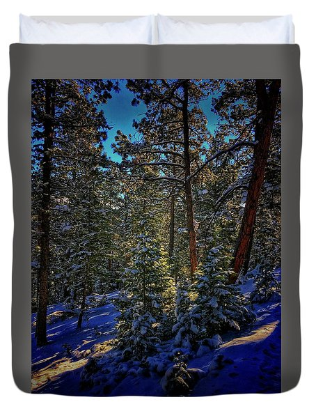 Duvet Cover featuring the photograph Forest Shadows by Dan Miller