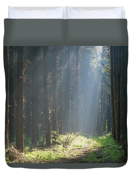 Duvet Cover featuring the photograph Forrest And Sun by Anjo Ten Kate