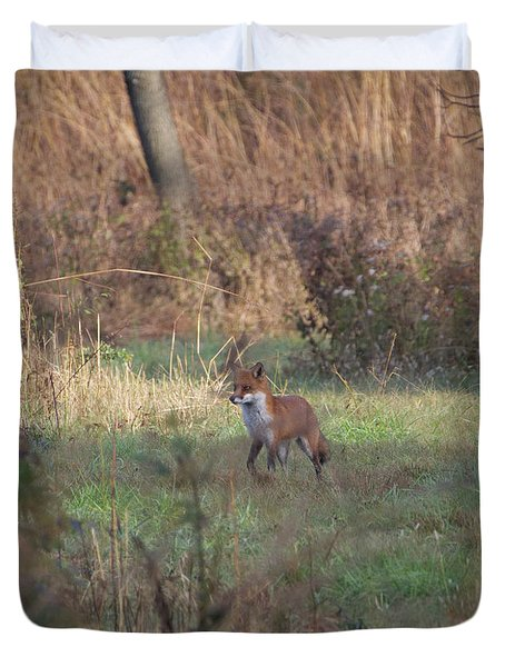 Fox On Prowl Duvet Cover