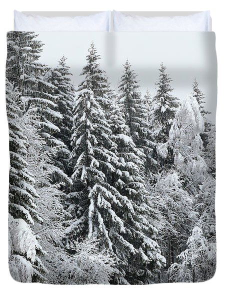 French Alps, Snow Covered Fir Trees In Winter  Photo Duvet Cover