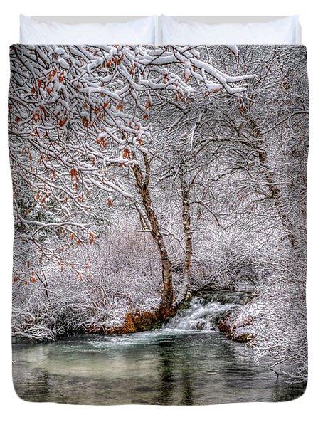 Frosty Pond Duvet Cover