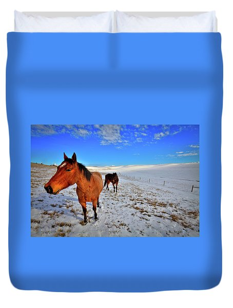 Duvet Cover featuring the photograph Geldings In The Snow by David Patterson