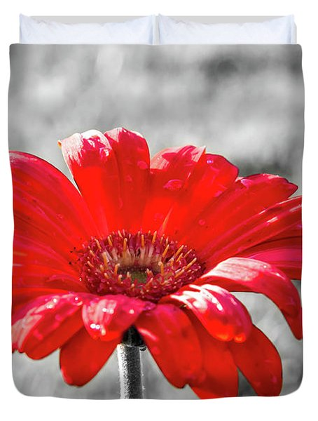 Gerbera Daisy Color Splash Duvet Cover