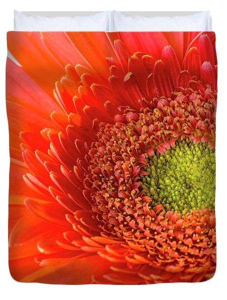 Gerbera Gorgeous  Duvet Cover