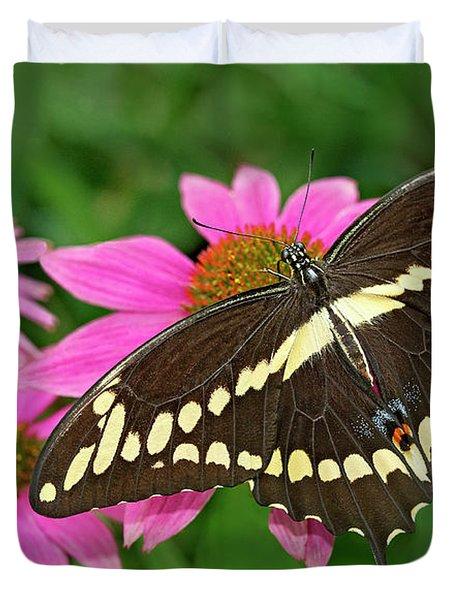 Giant Swallowtail Papilo Cresphontes Duvet Cover