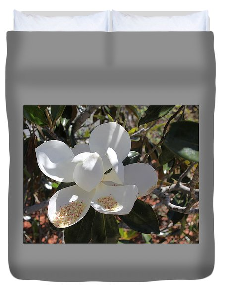 Gigantic White Magnolia Blossoms Blowing In The Wind Duvet Cover