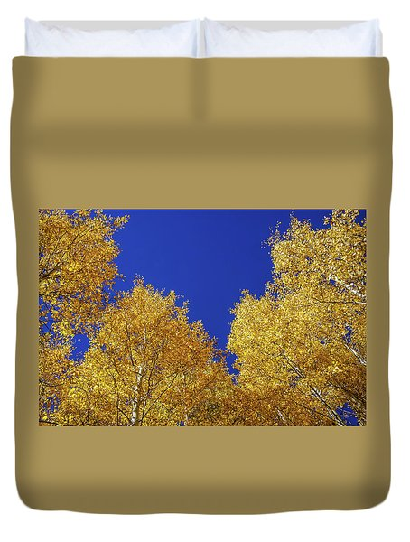 Golden Aspens And Blue Skies Duvet Cover