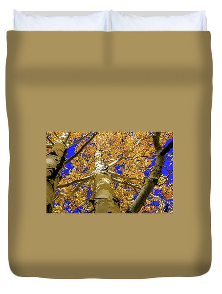 Golden Aspens In Grand Canyon Duvet Cover