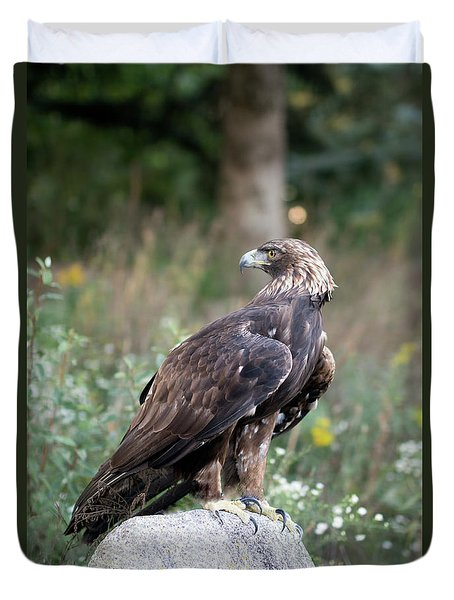 Golden Eagle On Rock 92515 Duvet Cover