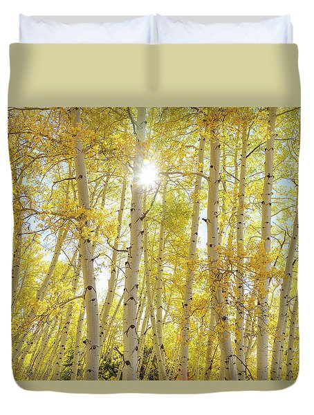Duvet Cover featuring the photograph Golden Sunshine On An Autumn Day by James BO Insogna