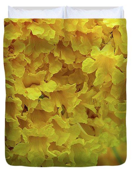 Duvet Cover featuring the photograph Golden Tree, Golden Trumpet Tree Or Tallow Pui Dthn0255 by Gerry Gantt