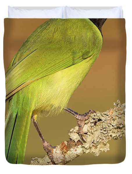 Gorgeous Green Jay Duvet Cover