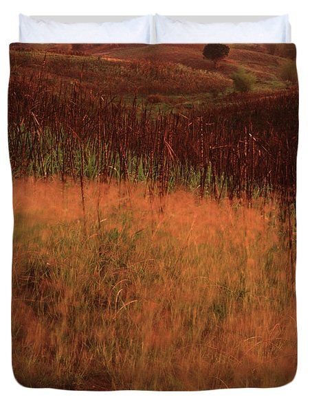 Grasses And Sugarcane, Trinidad Duvet Cover