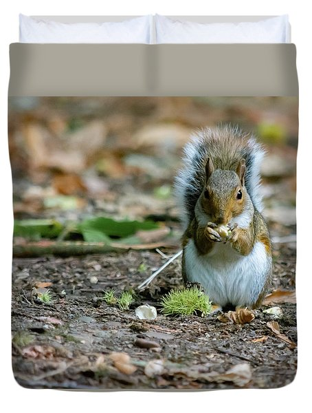 Duvet Cover featuring the photograph Gray Squirrel Stood Upright Eating A Nut by Scott Lyons