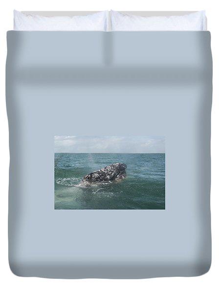 Gray Whale In Bahia Magdalena Duvet Cover
