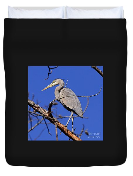 Great Blue Heron Strikes A Pose Duvet Cover