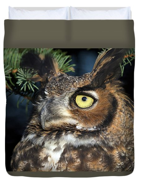 Great Horned Owl 10181801 Duvet Cover