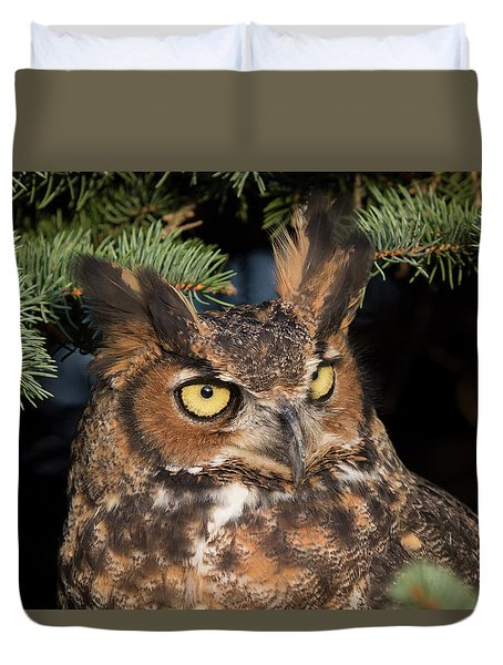 Great Horned Owl 10181802 Duvet Cover